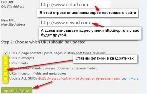Окно для изменения адреса сайта